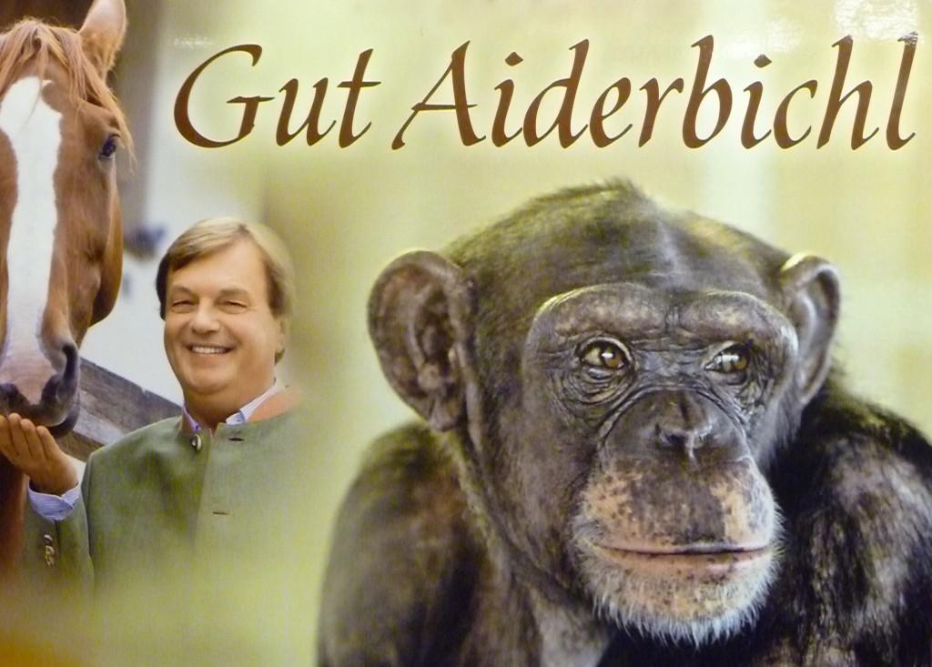 P1000519 1024x733 Ein Besuch im Gut Aiderbichl im Advent
