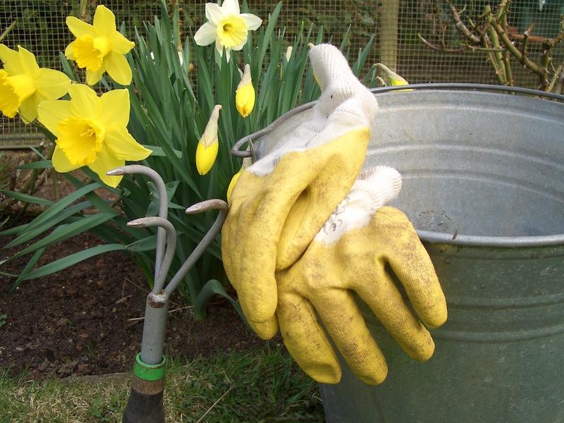 452274 R by Gesa Zimmermann pixelio.de  Das Frühjahr beginnt mit Gartenarbeit