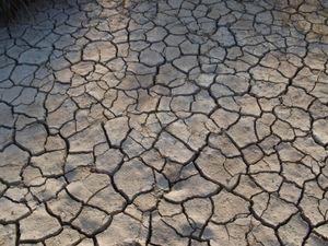 Klimawandel macht Menschen aggressiver