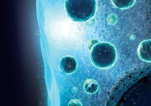 Diabetes: Neuer Behandlungsansatz mit Gelimplantat