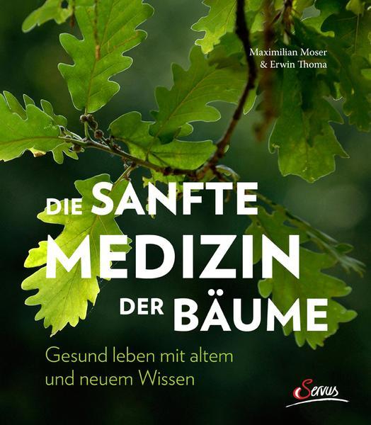 die sanfte medizin der baeume Die sanfte Medizin der Bäume