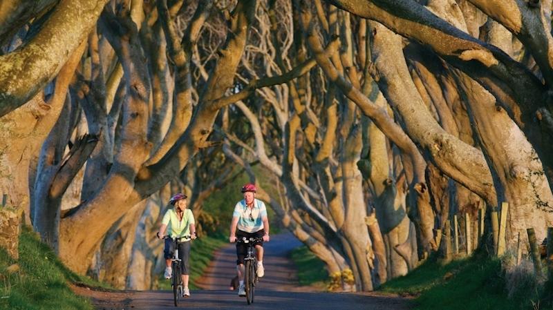 DarkHedges Nordirland zu besuchen, fasziniert immer wieder