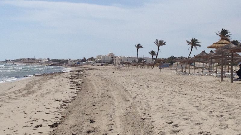 IMG 0936 Tunesien hat mehr zu bieten als reine Badeferien