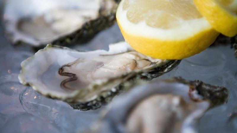 Oysters Nordirland zu besuchen, fasziniert immer wieder