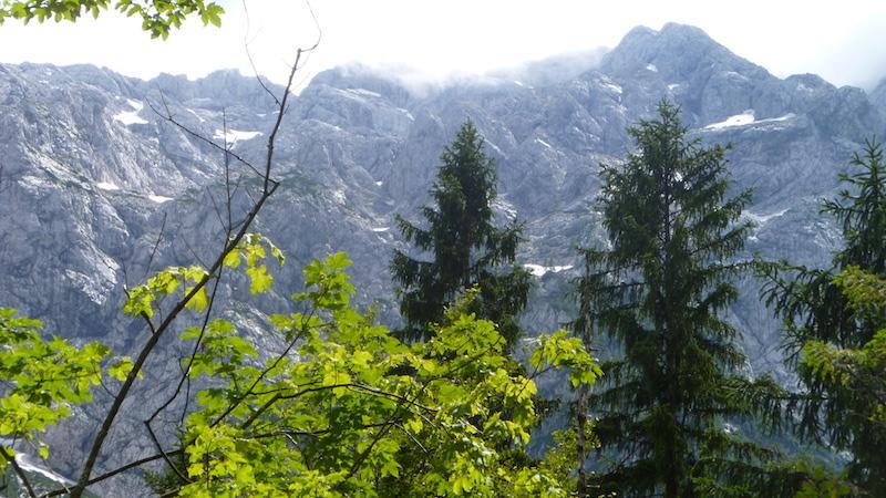 P1030973 Pure Natur erleben in den Bergen Sloweniens