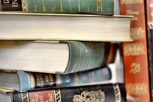 Literatur doch nicht vom Aussterben bedroht