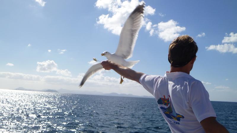 P10404671 Lanzarote die Romantische Insel der Kanaren