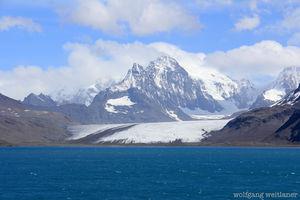 Antarktis: Zerstörtes Ökosystem wiederherstellen