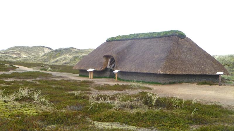 P10501381 Insel Amrum – kleine Insel, große Freiheit