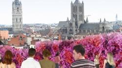 Gent – die Stadt für Blumenliebhaber