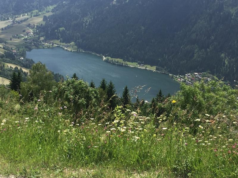 IMG 1909 Ihr Aktivurlaub am Brennsee in Kärnten