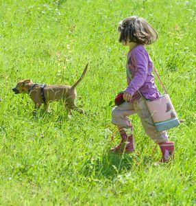 Familienhunde unterschätzte Gefahr für Kinder