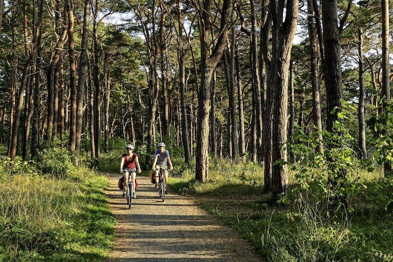 CMR CW 64 Radfahrer Baabe 09 16 Die wild verträumte Insel Rügen