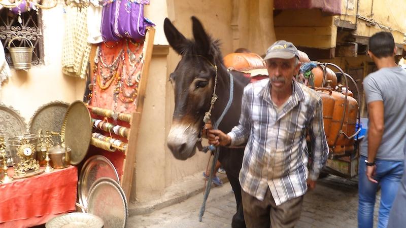 P1070168 Fes die königlichste aller Städte Marokkos