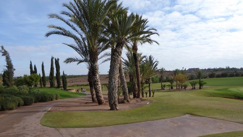 P1020750 Golfdestination Marrakech in Marokko