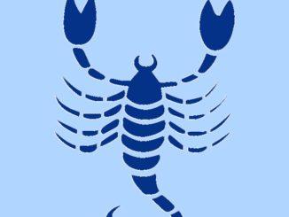 Der Skorpion Foto: pixabay.com/akz-o