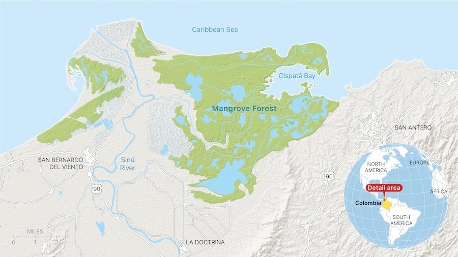 Karte des Mangrovenwaldes im Seeschutzgebiet Cispatá in Córdoba, Kolumbien