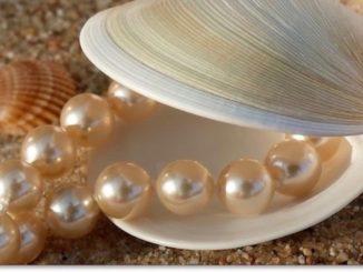 Perlenkette Foto: Rosel-Eckstein_pixelio.de