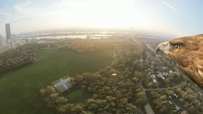 Wien aus der Adlerperspektive. © WienTourismus/Red Bull Media House