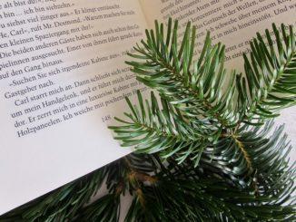 Weihnachten mit Büchern | Foto: JOUJOU_PIXELIO.DE
